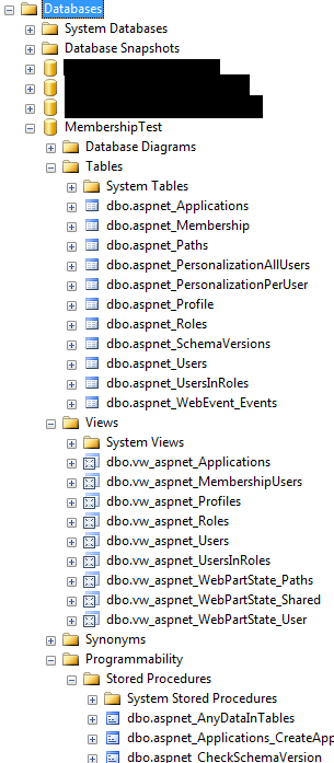 ASP NET Membership Schema Created Automatically